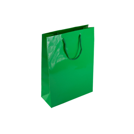 Pgr89sg Small Green Gloss Laminated Paper Gift Bags