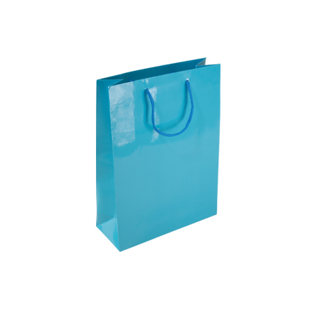 Psb84sg Small Sky Blue Gloss Laminated Paper Gift Bags