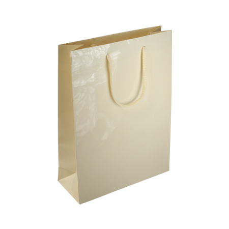 tiny paper bags with handles