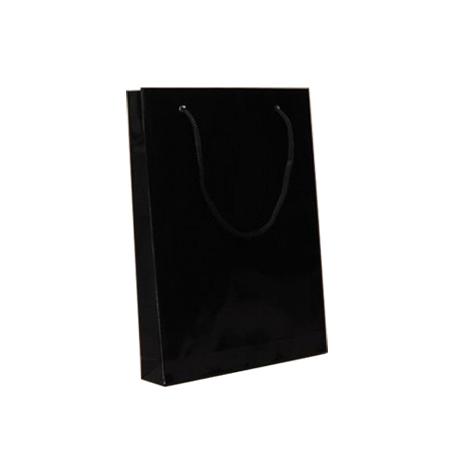 Small Black Gloss Laminated Paper Bags