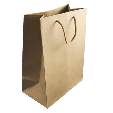 Small Brown Kraft Paper Bags