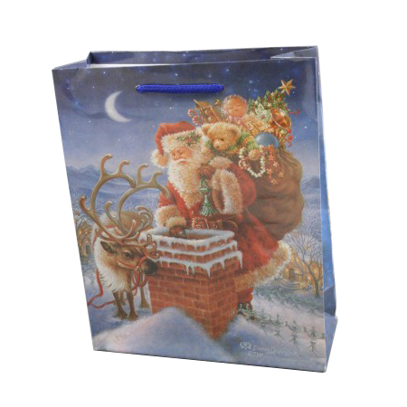 Medium Sky Blue Christmas Santa Chimney Gift Bag