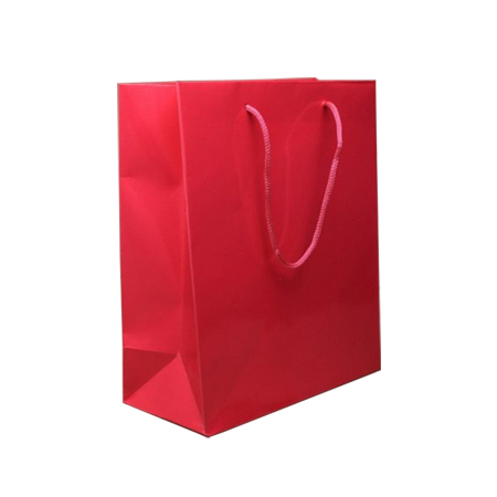 Small Fuchsia Gloss Laminated Paper Bags