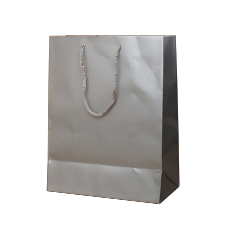 Small Silver Gloss Laminated Paper Bags