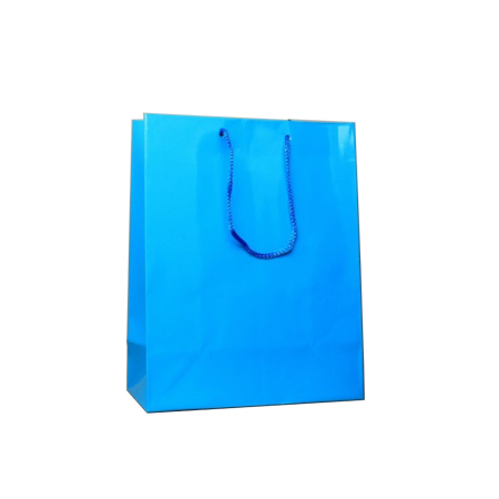 Small Turquoise Gloss Laminated Paper Bags