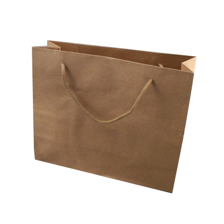 Medium Natural Brown Paper Gift Bag with Corded Handle