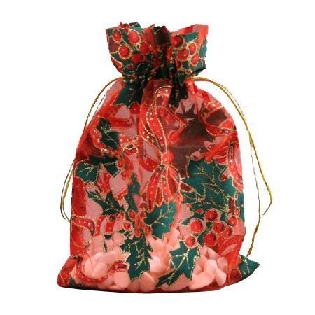 Medium Red Christmas Organza Gift Bag with Holly Print