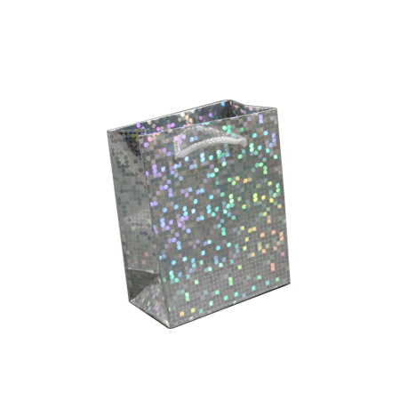 Small Silver Holographic Foil Gift Bag with White Corded Handle