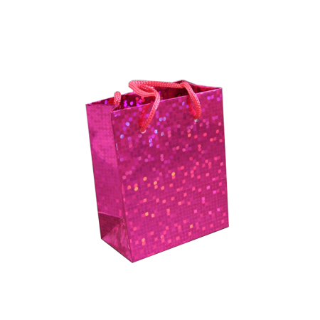 Small Pink Holographic Foil Gift Bag with Pink Corded Handle