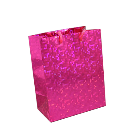 Small-Pink-Holographic Gift Bag