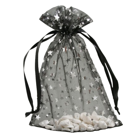 Medium Black Organza Gift Bag with Silver Star Print