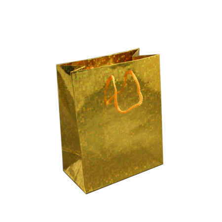Small Gold Holographic Foil Gift Bag with Gold Corded Handles