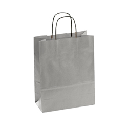 Medium Silver Kraft Paper Bag