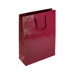 Medium Burgundy Paper Gift Bag