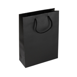 Medium Black Paper Bag