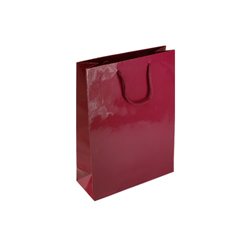 Small Burgundy Paper Gift Bag