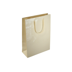 Small Cream Paper Gift Bag