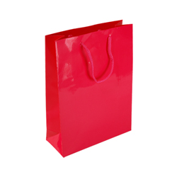 Medium Dark Pink Paper Bag