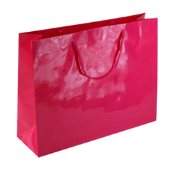 Large Dark Pink Paper Gift Bag