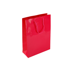 Small Dark Pink Paper Gift Bag