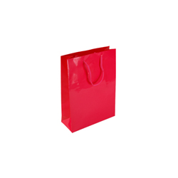 Extra Small Dark Pink Paper Gift Bag