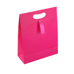 Medium Dark Pink Paper Gift Bag