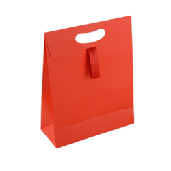 Medium Red Paper Gift Bag