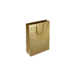 Extra Small Gold Paper Gift Bag