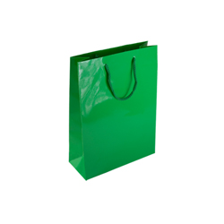 Small Green Paper Gift Bag