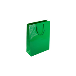 Extra Small Green Paper Gift Bag