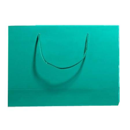 Large Aqua Matt Laminated Paper Bags