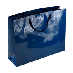Large-Navy Blue-Paper Bag