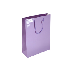 Small Lilac Paper Gift Bag