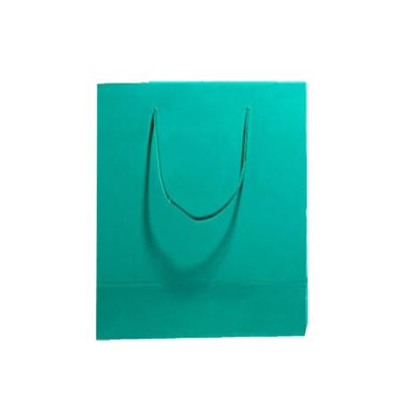 Medium Aqua Matt Laminated Paper Bags