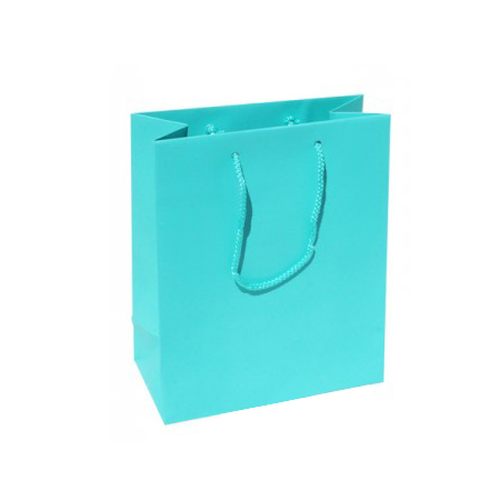 Small Plus Aqua Paper Gift Bag