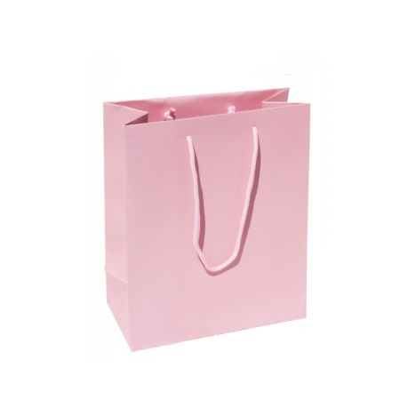 Small Plus Baby Pink Paper Gift Bag