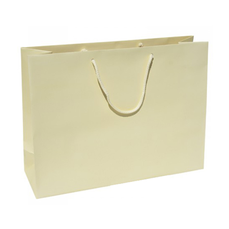 Large Buttermilk Paper Gift Bag