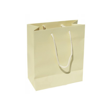 Small Plus Buttermilk Paper Gift Bag