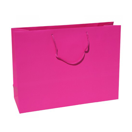 Large Fuchsia Paper Gift Bag