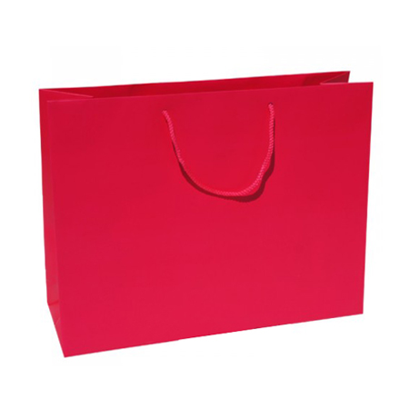 Large Raspberry Paper Gift Bag