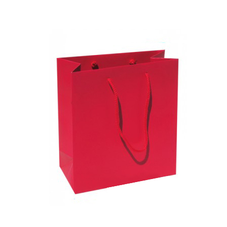 Small Plus Raspberry Paper Gift Bag