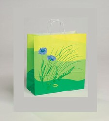 Medium Flowers Kraft Paper Bag