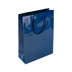 Medium Navy Blue Paper Bag