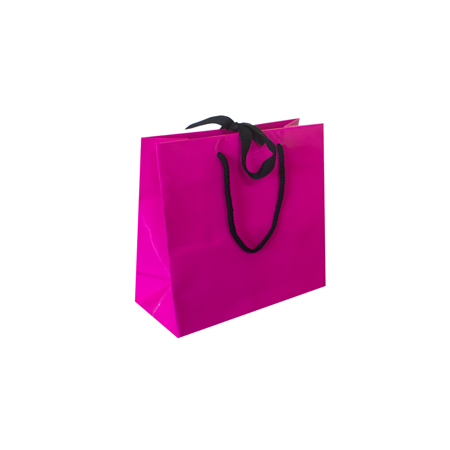 Small Fuchsia Ribbon Tie Laminated Paper Carrier Bags