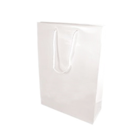 Medium White Gloss Laminated Paper Bag