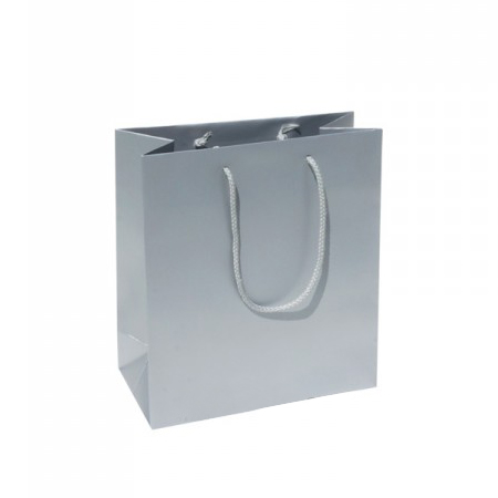 Small Plus Silver Paper Gift Bag