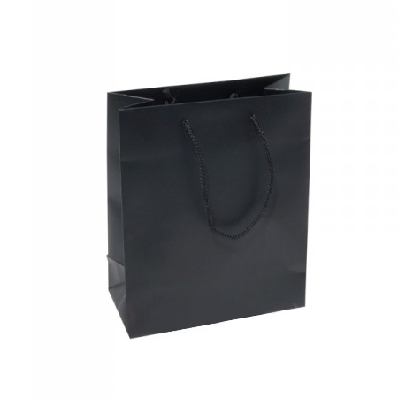 Small Plus Black Paper Gift Bag