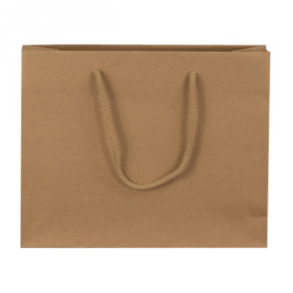Large Brown Recycled Paper Carrier Bags