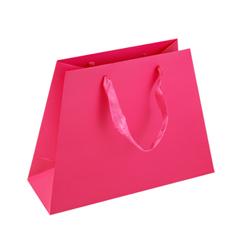 Medium Dark Pink Paper Gift Bag