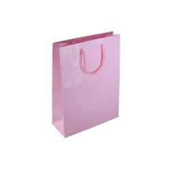 Small Baby Pink Paper Gift Bag
